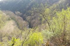 21-Поглед на део клисуре и реку са видиковца